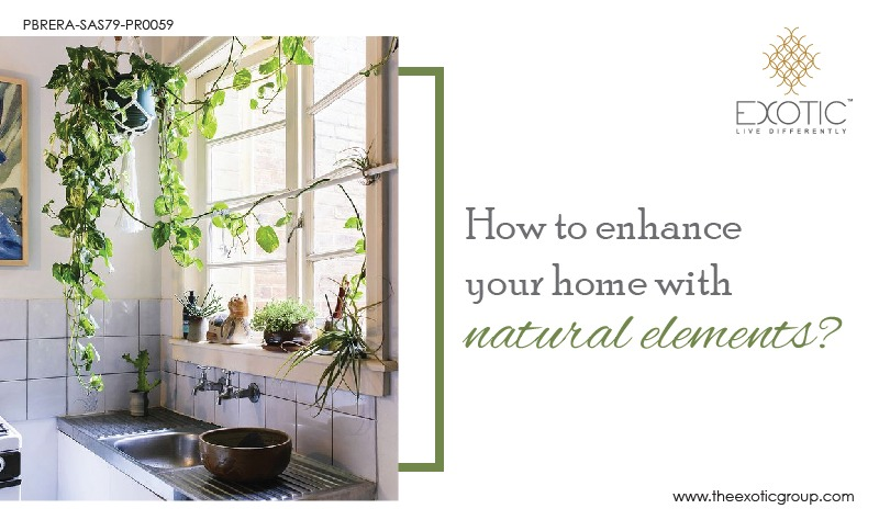 Enhance Your Home with Natural Elements